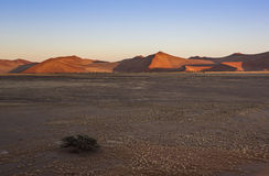 Namib. First sunlight on the dunes in the Namib Desert, Namibia, Southern Africa royalty free stock images