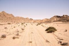 Namib-Landschaft Lizenzfreie Stockfotos