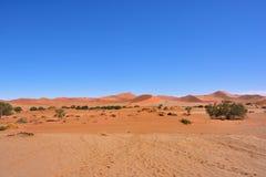 Namib-Naukluft National Park, Namibia, Africa. Beautiful landscape with red dunes at sunrise, Sossusvlei, Namib Naukluft National Park, Namibia, Africa royalty free stock photography