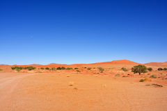 Namib-Naukluft National Park, Namibia, Africa Royalty Free Stock Photos