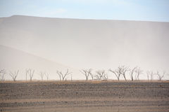 The Namib-Naukluft National Park Stock Photos