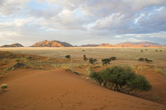 Namib-Naukluft National Park Stock Photography