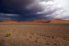 Namib-Naukluft-Nationalpark. Thunderstorm about the sandy dunes of the Namib Naukluft-national park in Namibia Royalty Free Stock Images