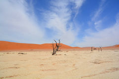 Namib-Naukluft Park Royalty Free Stock Image