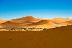Namib-Naukluft parkerar, den Namib öknen, blå himmel för orange dyn, Sossusvlei, Namibia royaltyfri fotografi