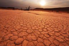 Namib op zonsondergang Royalty-vrije Stock Fotografie