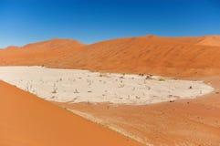 Namib pustynia Obrazy Royalty Free