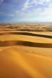 Namib pustynia, Namibia, Afryka Obraz Stock