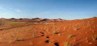 Namib pustynia, Sossusvlei, Namibia Fotografia Royalty Free