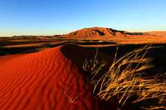 Namib Rand NR â Wolwedans Lizenzfreie Stockfotos