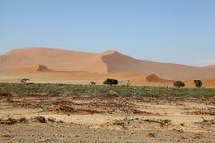 Namib sanddyn Royaltyfri Bild