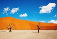 namib sossusvlei pustynny Namibia Fotografia Royalty Free