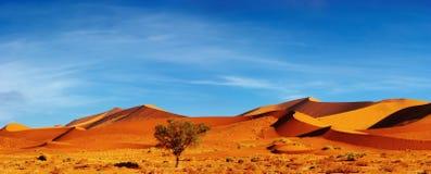namib sossusvlei pustynny Namibia Obraz Royalty Free