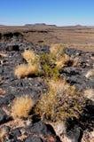 Namibië: Vulkanische stoneformations bij de pensionair van de Canion van de Vissenrivier royalty-vrije stock fotografie