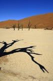 Namibia Stock Images