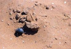 Namibia Fotografering för Bildbyråer