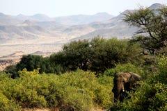 Namibia, Damaraland, stockbilder