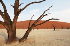 Namibia Royalty Free Stock Photo