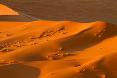 Namibia desert Royalty Free Stock Images
