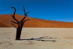 Namibia desert Stock Images