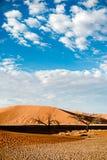 Namibia Desert, Africa Royalty Free Stock Photography