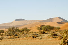 Namibia desert, Africa Stock Photos