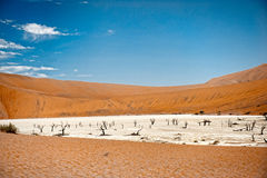 Namibia Desert, Sussusvlei, Africa Royalty Free Stock Photos