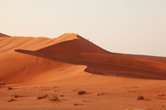 Namibia dunes Royalty Free Stock Photo