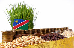 Namibia flag waving with stack of money coins and piles of wheat. And rice seeds Stock Image
