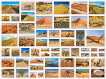 Namibia landskap collage fotografering för bildbyråer