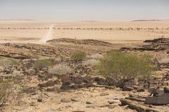 Namibia - Namib Desert Stock Photo