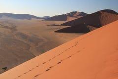 Namibia piaska diuny Zdjęcie Stock