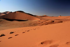 Namibia piaska diuny Obraz Royalty Free
