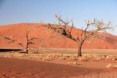 Namibia pierścionki Obraz Stock