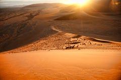 Namibia pustynia, Afryka Zdjęcia Stock