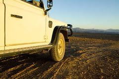 namibia safari arkivfoton