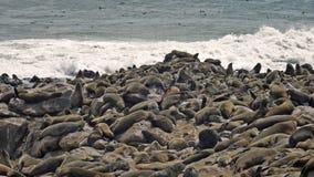 Namibia, Skeleton coast stock photo