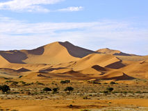 namibia sossusvlei Arkivfoto