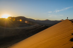 Namibia - Sossusvlei Royaltyfri Fotografi