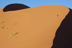 Namibia - Sossusvlei sand dune. An adventure tourist on a sand dune in Sossusvlei in the Namib Desert in Namibia Stock Photos