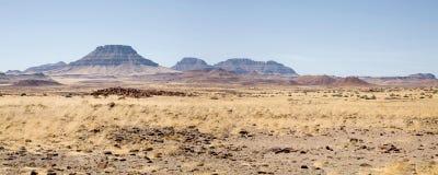 namibia vildmark Arkivbilder