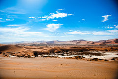 Namibia-Wüste, Sussusvlei, Afrika Stockbilder