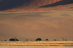 Namibian desert landscape Royalty Free Stock Photo