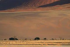 Namibian desert landscape royalty free stock photo
