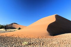 Namibian desert. Largest sand dunes in the world royalty free stock photos