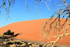 Namibian desert. Largest sand dunes in the world stock image