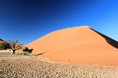 Namibian desert. Largest sand dunes in the world stock photos