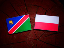 Namibian flag with Polish flag on a tree stump isolated. Namibian flag with Polish flag on a tree stump Royalty Free Stock Images