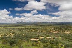 Namibian grassland in the rain season near Windhoek. Namibia, Africa Royalty Free Stock Image