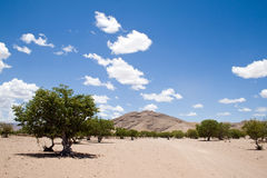 Namibian landscape Royalty Free Stock Photos